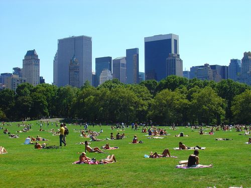 Lawn-on-central-park